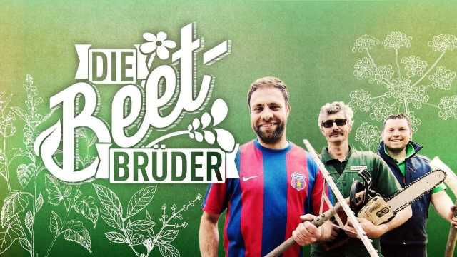 Vox Beet Brüder