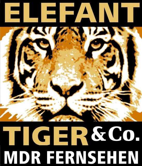 Elefant Tiger Und Co Folgen