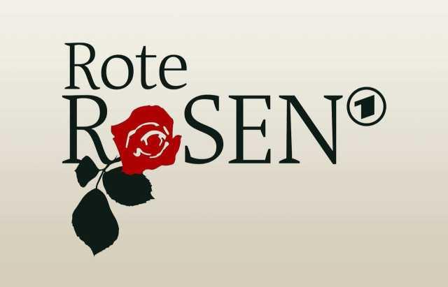 ✔️ Rote Rosen mit /Übertopf ✔️ 1 St/ück A1 Qualit/ät ✔️